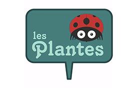 LES PLANTES – 2020